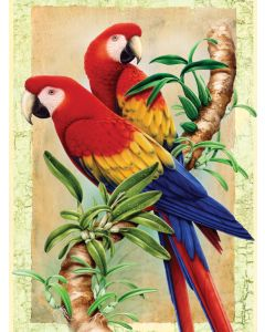 R&L painting by numbers - PJS438 3T bamboo parrots