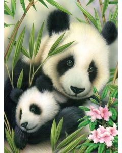 R&L painting by numbers - PJS39 3T panda & baby