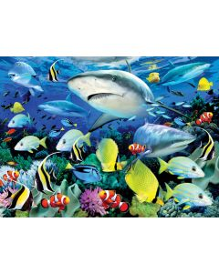 R&L painting by numbers - PJL42 Reef sharks