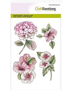 Craft Emotions clearstamps hibiscus